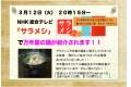 サラメシ_HP用